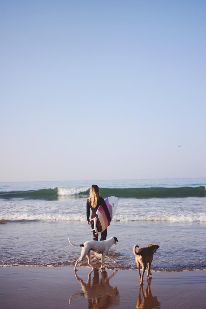 surf2_zpsn4pz5cru
