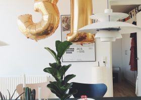 Den bedste fødselsdag