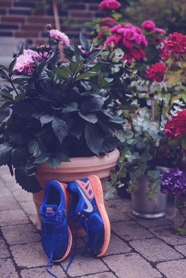 run4_zpsojaho3q6