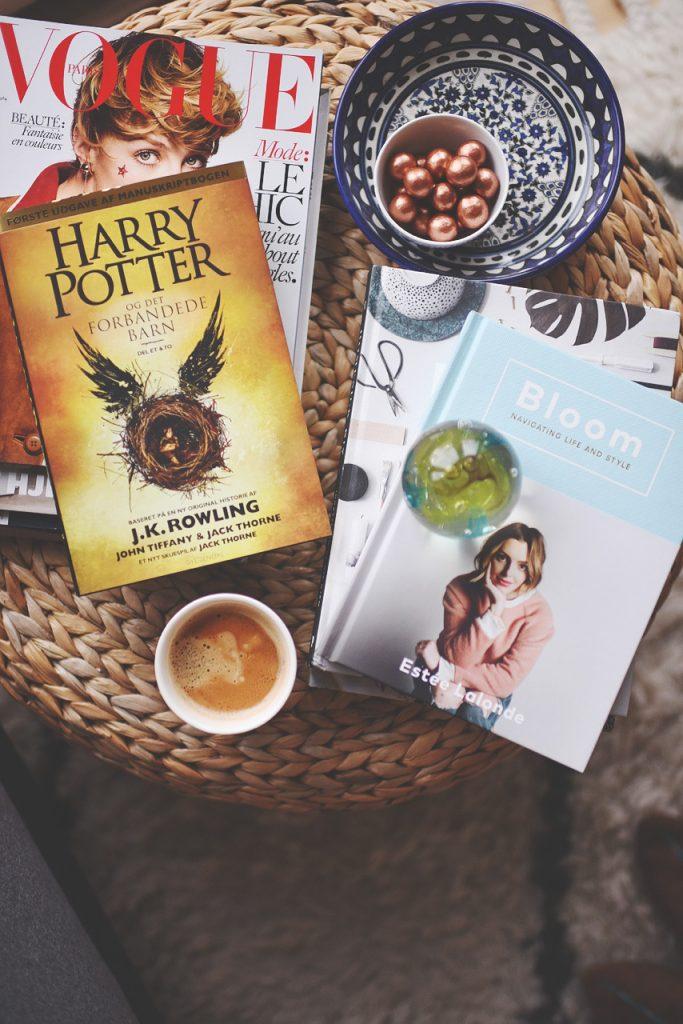 harry potter4