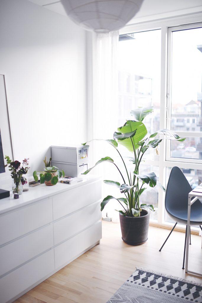 kommode planter