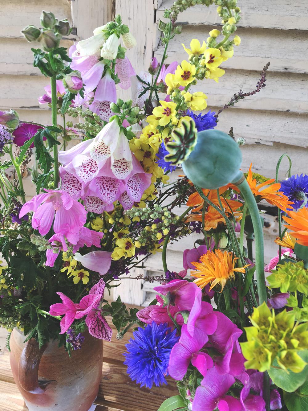 smukke, farverige, vilde blomsterbuketter