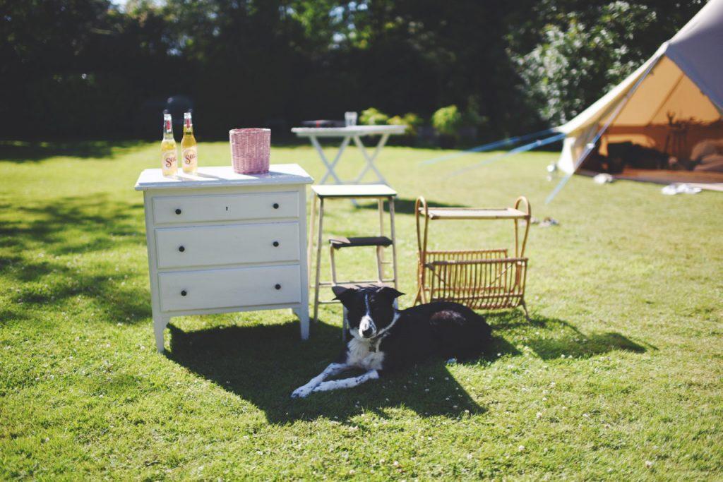 kommode, skammel og magasinholder og hund der ligger foran