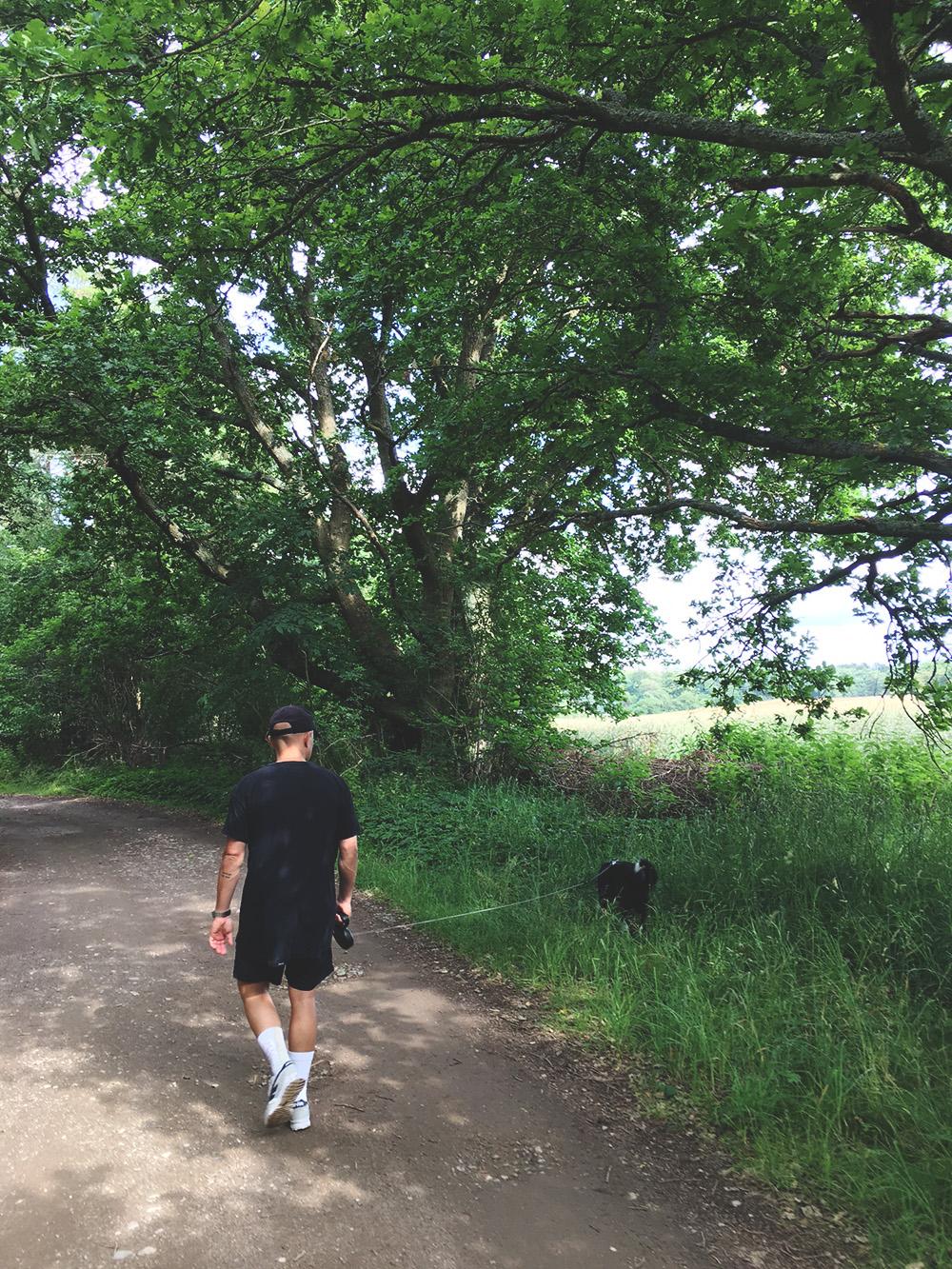 hund og mand går tur