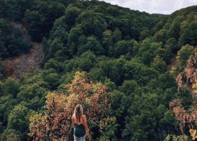 Guide: Naturoplevelser, fika og blomsterherlighed i Skåne
