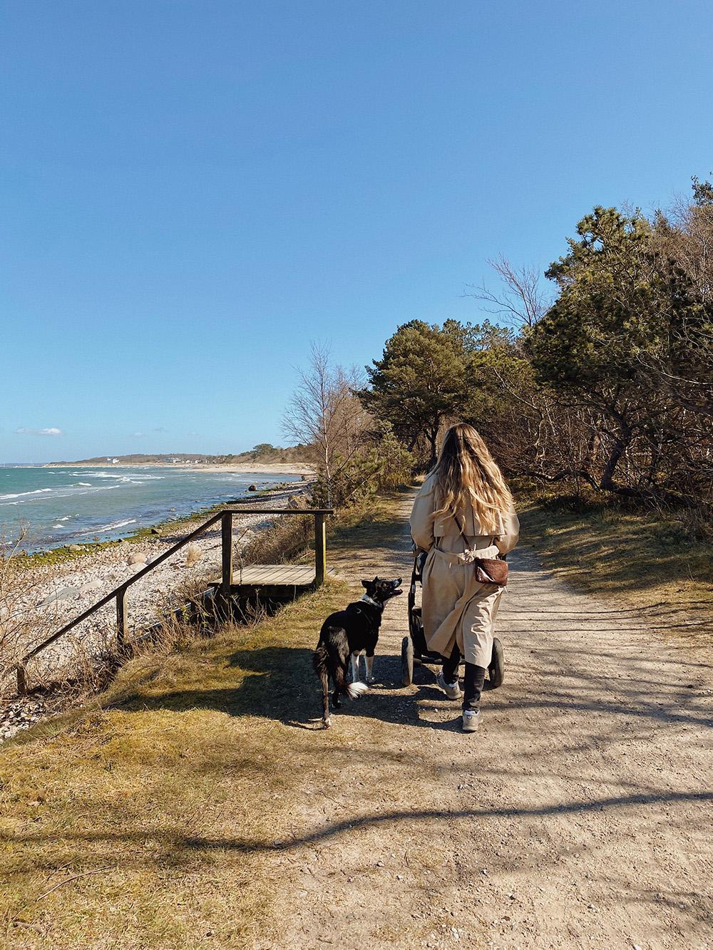 kvinde med barnevogn og hund ved stranden